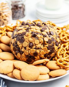 A peanut butter cheese ball wrapped in chocolate chips and peanut butter chips on a plate with pretzels and cookies.