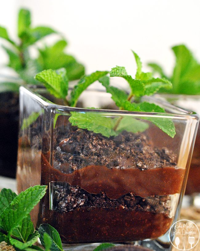"""Flower pot chocolate pudding - These flower pot chocolate puddings are the simplest fun dessert. Layered """"dirt"""" of chocolate pudding with crushed Oreos, a planted """"flower"""" of mint leaves."""