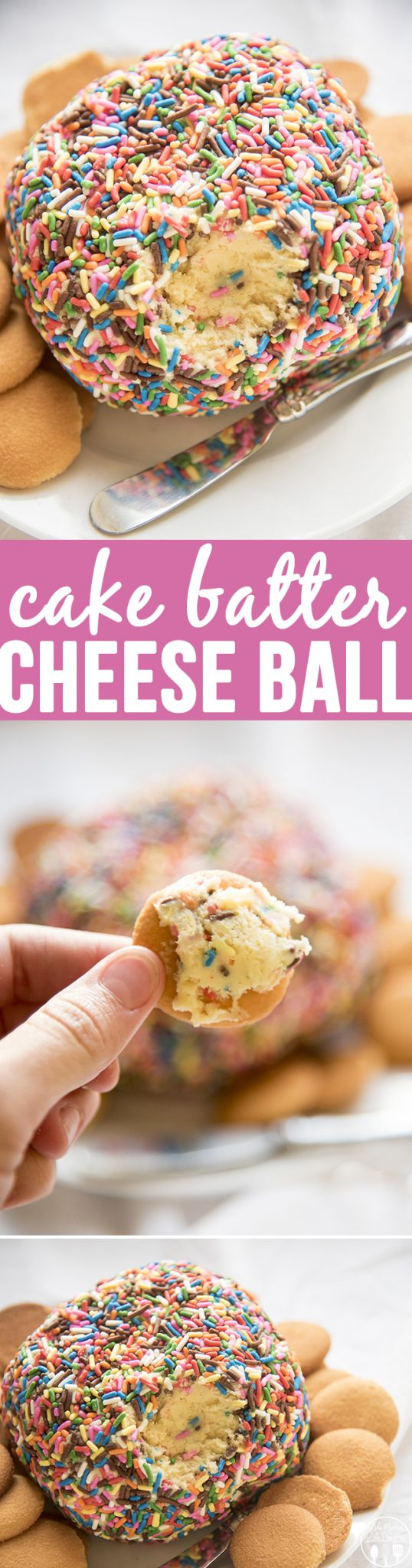Cake Batter Cheese Ball - This is a delicious dessert cheese ball that tastes just like cake batter. Great for parties or just for a sweet treat!