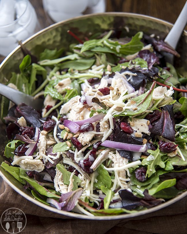 Chicken Cranberry Sunflower Salad - This amazing salad is full of spring mix, shredded chicken, mozzarella cheese, sunflower seeds, red onion, and dried cranberries all topped with a poppyseed dressing