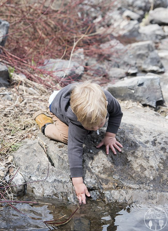 hiking tips 1