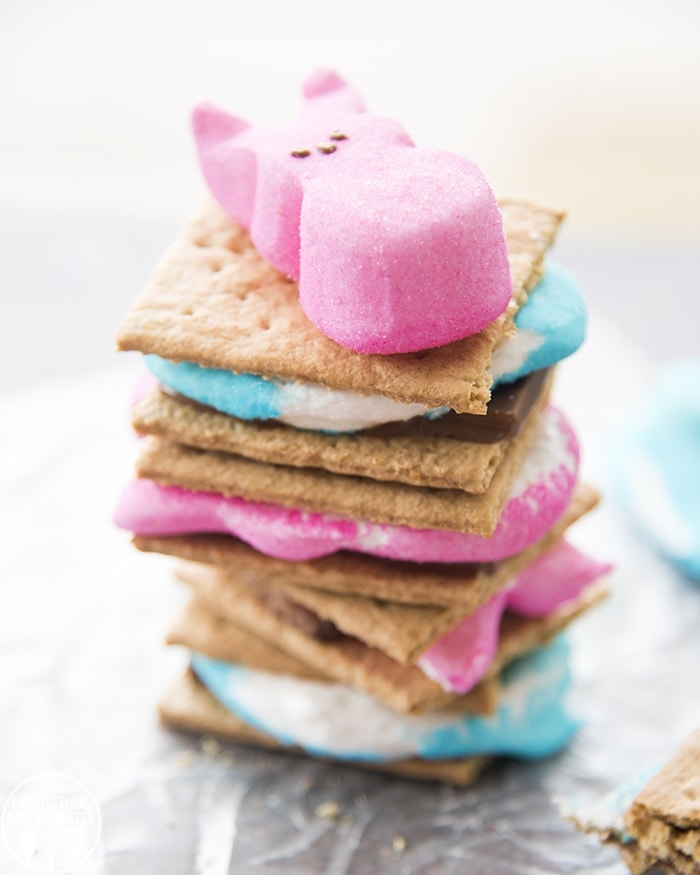 S'mores made with blue and pink bird and bunny Peeps