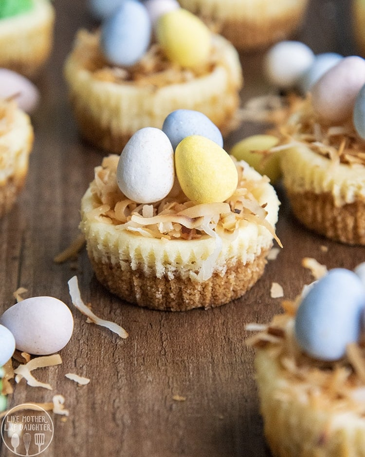 These Easter Egg Mini Cheesecakes are adorable mini cheesecakes topped with shredded coconut and mini egg candies for the perfect cute Bird Nest Easter dessert!