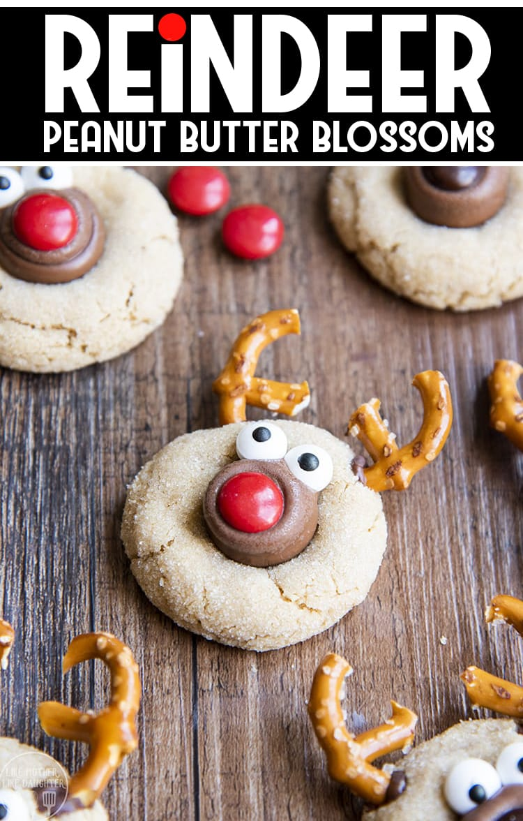 These reindeer peanut butter blossoms are the classic peanut butter and chocolate cookie, dressed up to look like a reindeer, for the perfect adorable Christmas cookie!