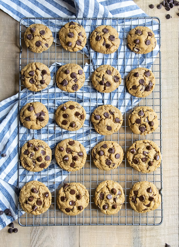 An overhead photo of 20 peanut butter chocolate chip cookies on a cooling rack, lined up in rows of 4, they're each topped with chocolate chips.