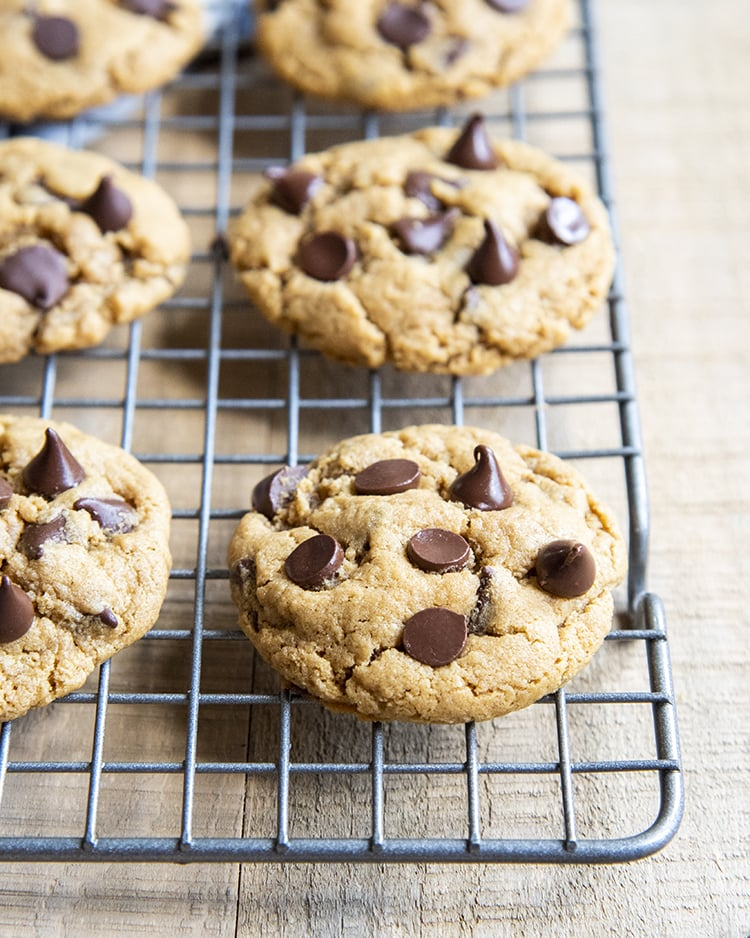Rows of cookies on a cooling rack, with chocolate chips all over the top.