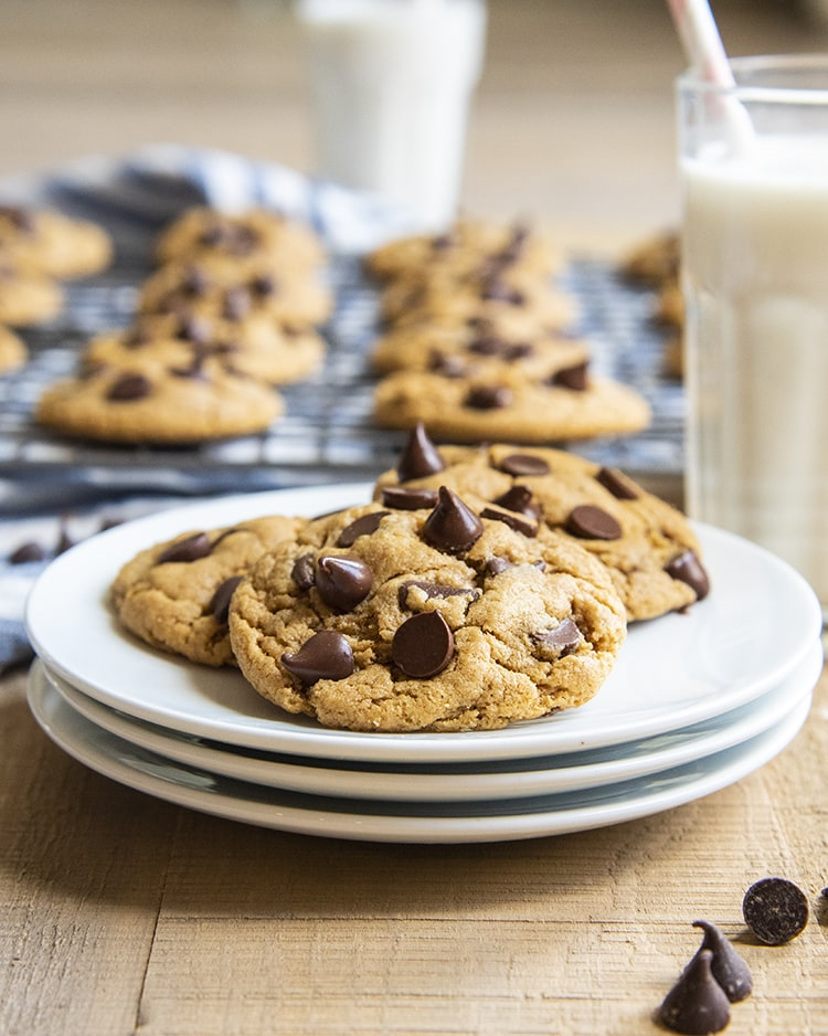 A plate of peanut butter chocolate chip cookies, with a glass of milk behind it.