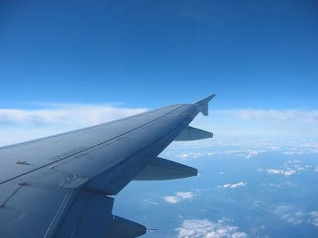 Plane wing.jpg