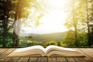 Book on wood planks over beauty mountains landscape background