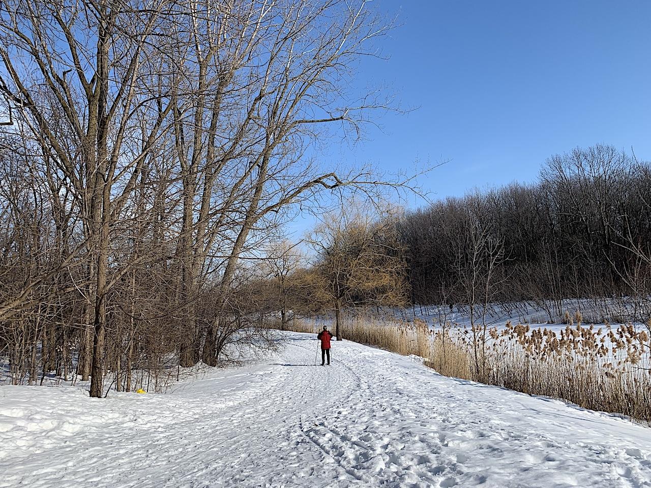 Montréal en janvier et les joies de l'hiver