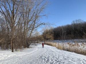 Read more about the article Montréal en janvier et les joies de l'hiver