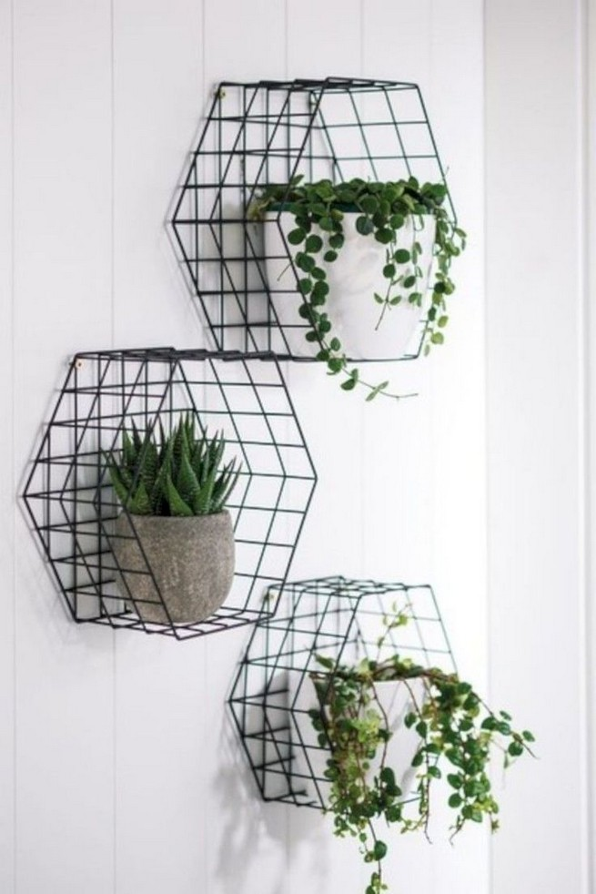 11 Fabulous Wall Planters Indoor Living Wall Ideas 09