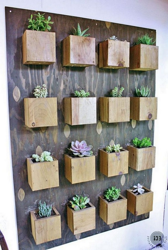 11 Lovely Small Cactus Ideas For Interior Decorations 01