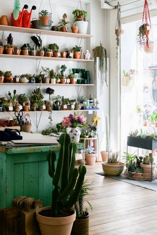 11 Lovely Small Cactus Ideas For Interior Decorations 05