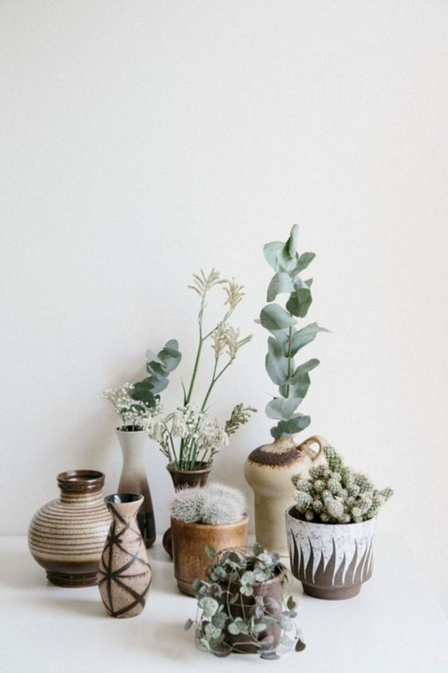 11 Lovely Small Cactus Ideas For Interior Decorations 18