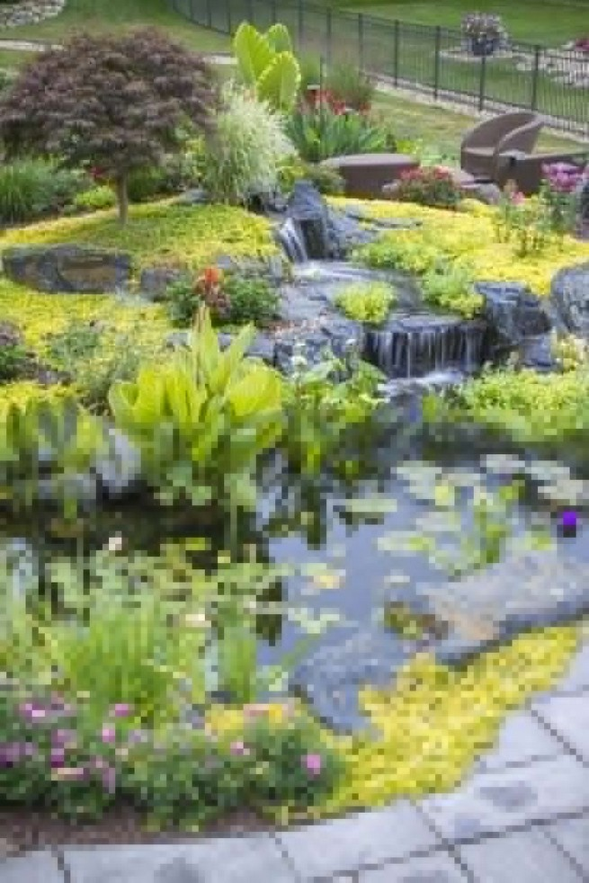 19 Gorgeous Backyard Ponds Water Garden Landscaping Ideas 05