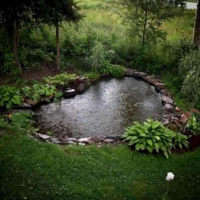 19 Gorgeous Backyard Ponds Water Garden Landscaping Ideas 06