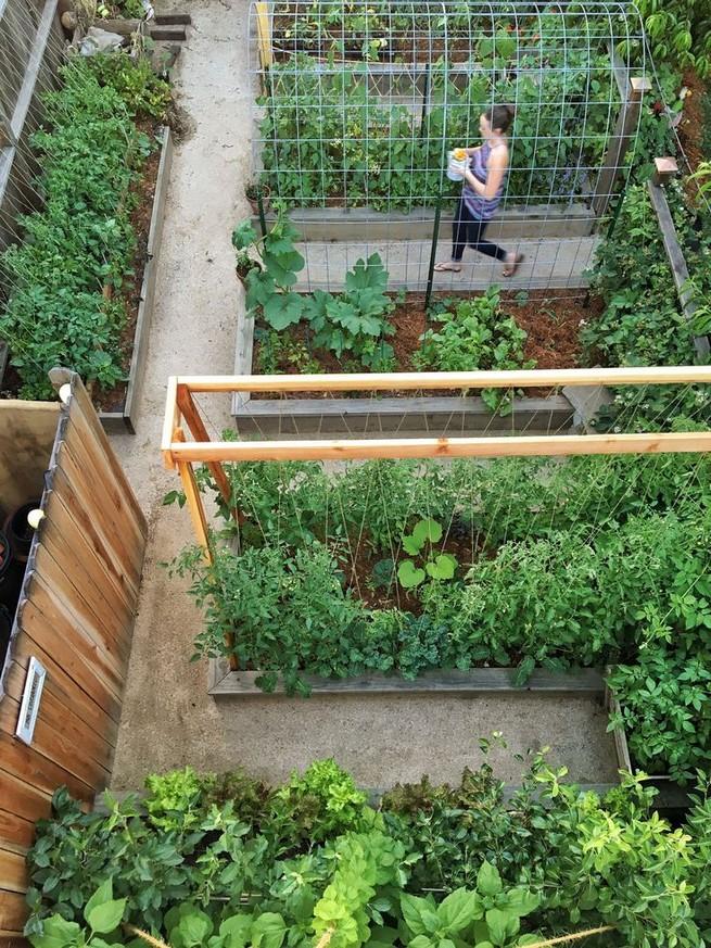 21 Best Container Vegetables Garden Inspirations Ideas 03