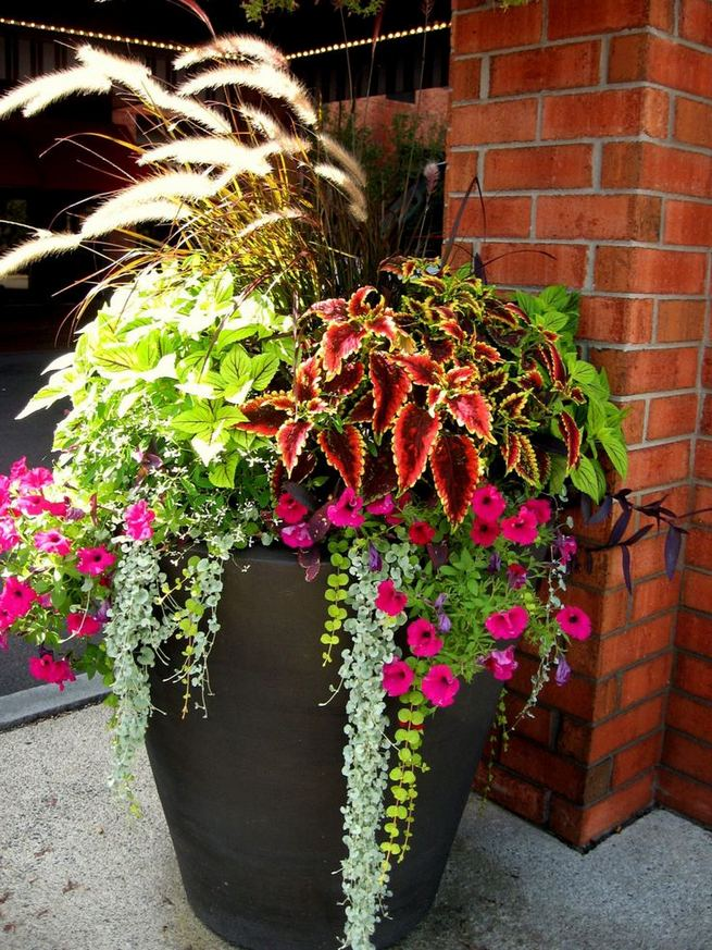 13 Brilliant Flower Pots Ideas For Your Garden 03