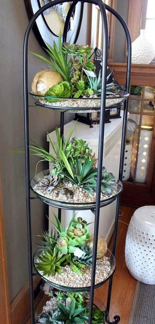 21 Creative DIY Indoor Garden Ideas 16