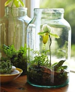 21 Creative DIY Indoor Garden Ideas 18