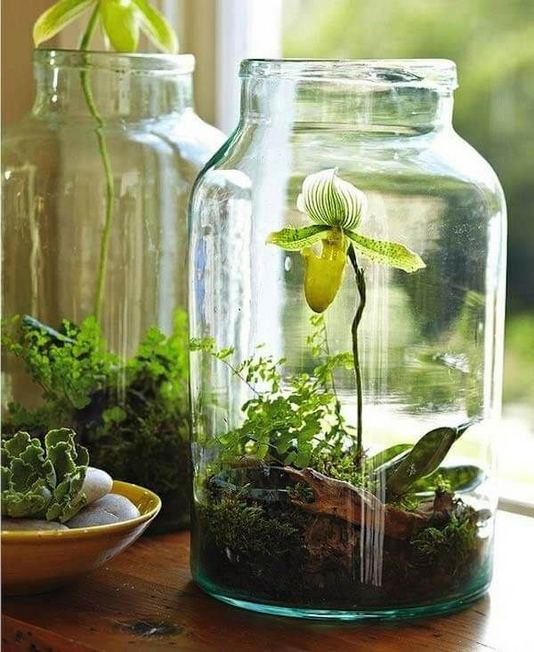 21 Creative DIY Indoor Garden Ideas 18