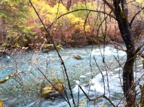 A lovely little brook.