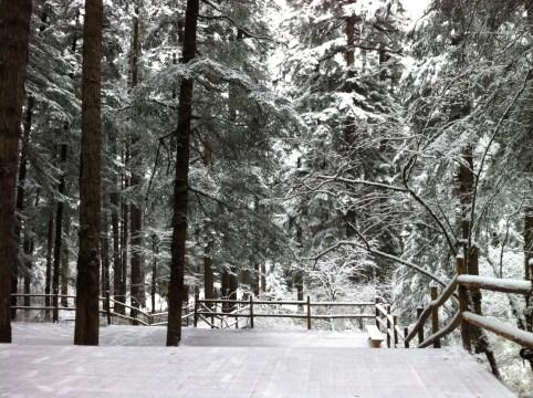 Like walking through Narnia....