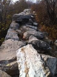 Great Wall, au naturel.
