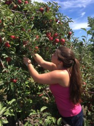 My first apple picking experience.