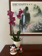 Some incongruous Christmas decor. Local Surinamese orchids, and exotic, cold-weather Christmas penguins.