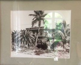A snapshot of Hemingway's house, way back when.