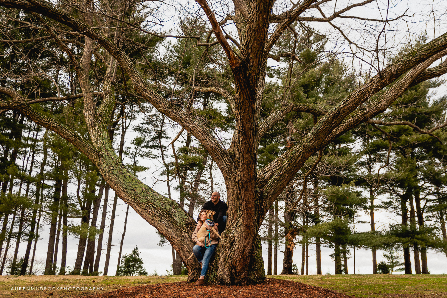 two harts barn engagement session spring grove