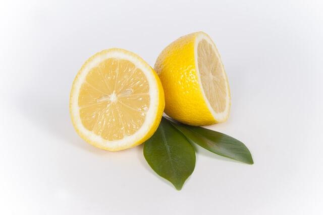 10月31日(土)亥鼻実験教室「レモンはあまい?~「味」を調べて体のフシギにせまろう!」を実施します