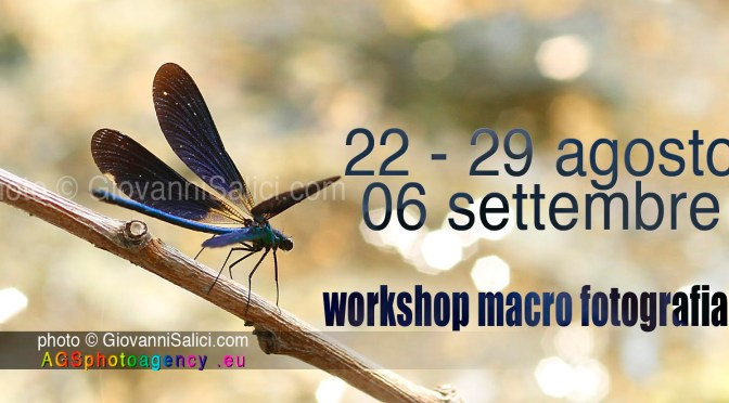 workshop di macro fotografia<br> pensa in piccolo ! </br>