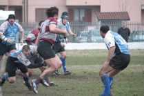 Velate2011_016