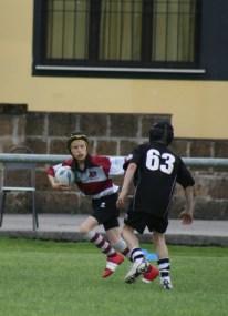 Rugby Under 10 Calvisano 6 05 2012 390