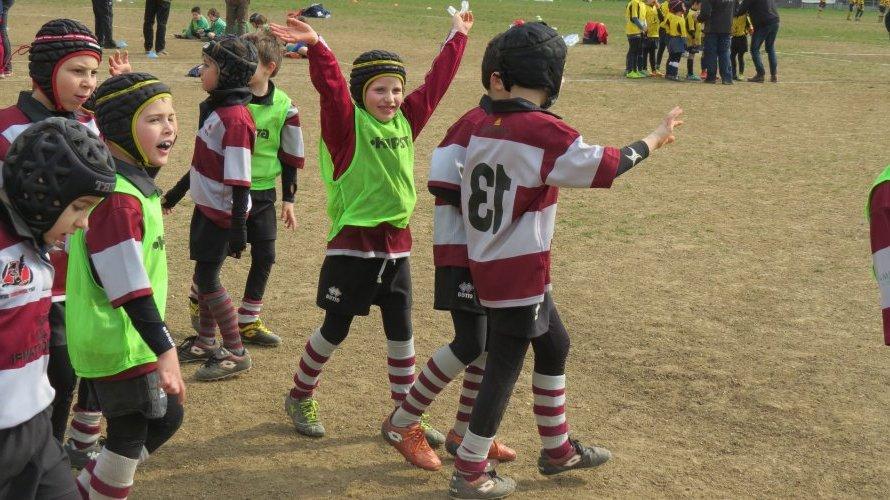 https://i2.wp.com/lnx.rugbycernusco.it/wp-content/uploads/2015/03/bruco_2015.jpg?resize=890%2C500