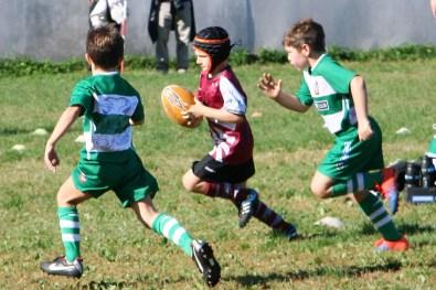 U8 Rugby Cesano 2017 (39)