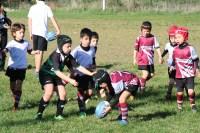 U8 Rugby Cesano 2017 (4)