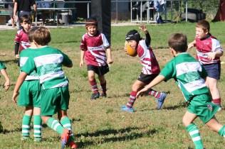 U8 Rugby Cesano 2017 (40)