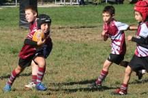 U8 Rugby Cesano 2017 (41)