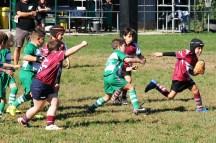 U8 Rugby Cesano 2017 (45)