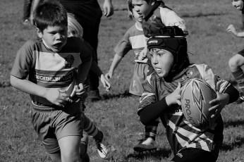 U8 Rugby Cesano 2017 (48)