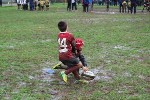 Torneo Pavia 2018 (308)