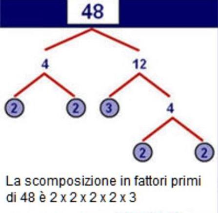 Diagramma Ad Albero Matematica