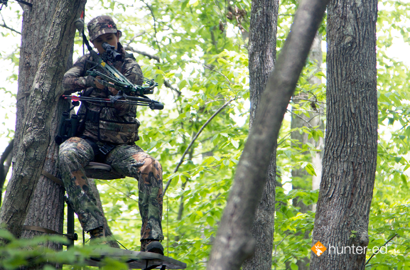 An Introduction to Tree Stand Safety