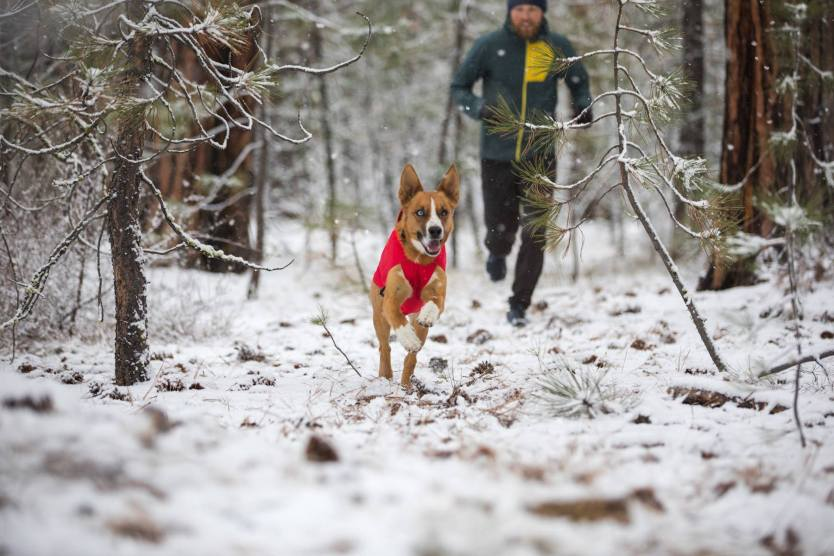 Ruffwear Launches New Performance Dog Gear for Winter 2018