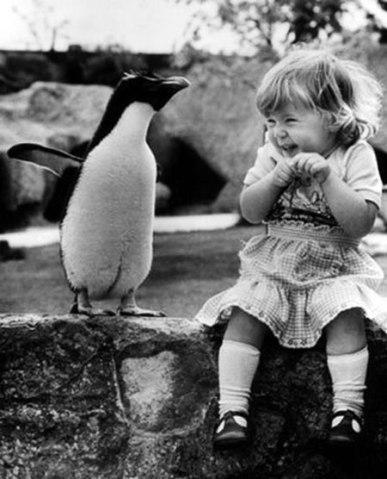 animals_friends_15