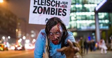 Germania: togliere lo statuto di beneficenza alle associazioni animaliste in caso di dubbio